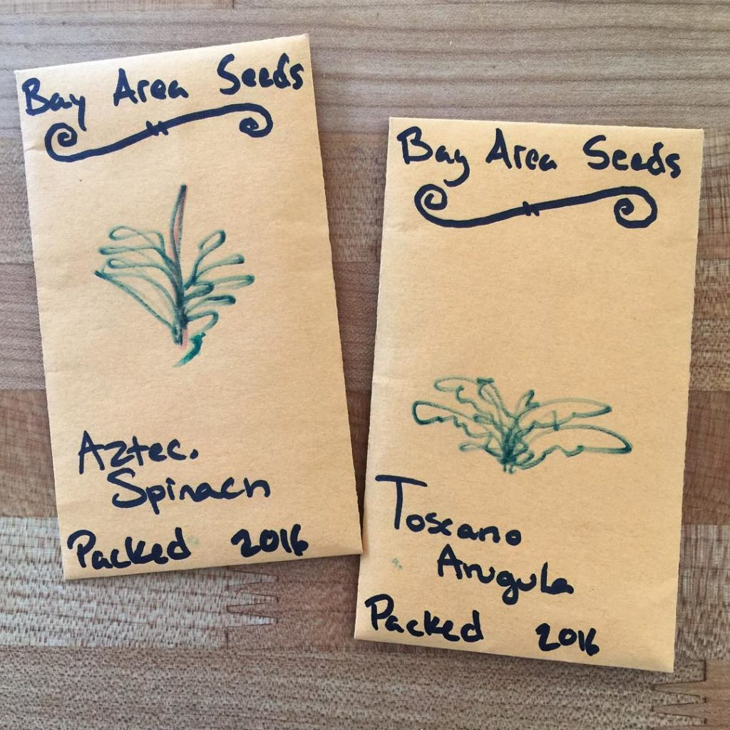 I started to think about our fall garden today, now is the time over here to start some seeds. I'm very excited about these ones that I picked up at our local farmers market! The spinach turns red as it starts to go to seed. #thehappygardeninglife #growsomethinggreen #garden #gardening #growyourownfood #backyardgarden #mybackyard #mybackyardgarden #vegetables #urbangarden #urbangardenersrepublic #losaltosfarmersmarket #greenthumb