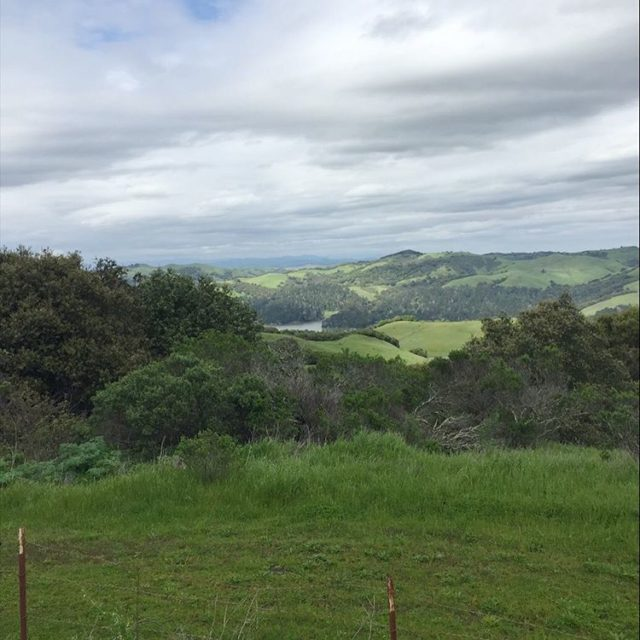 I got to spend the weekend solo in Berkeley Ithellip