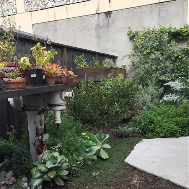 Garden inspiration from am awesome urban garden patio at Missionhellip